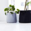Soft pots, beige, grey, black_flower pots, black